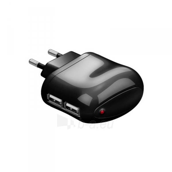 Techly USB įkroviklis 5V 2.1A, du USB prievadai, juodas Paveikslėlis 1 iš 2 250256401243