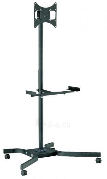 Televizoriaus stovas REFLECTA TV Stand 37P-Shelf Extend black Paveikslėlis 1 iš 1 310820218934