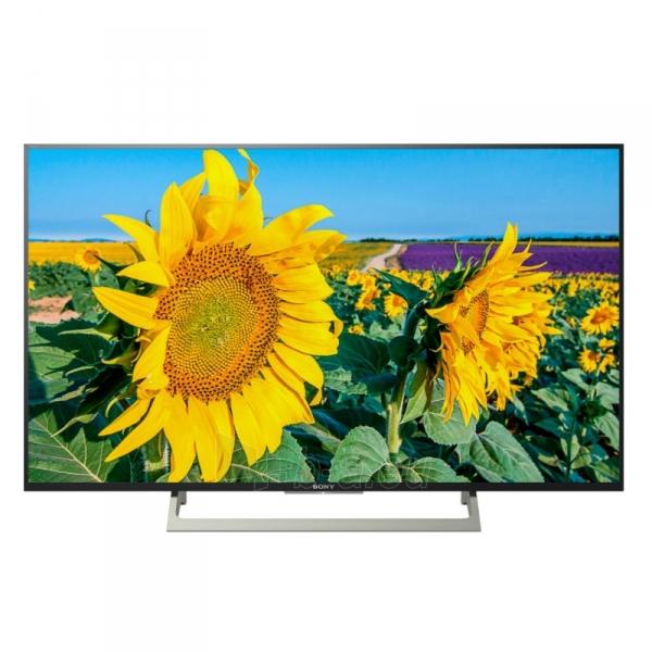 Televizorius KD-49XF8096 Paveikslėlis 1 iš 3 310820158303