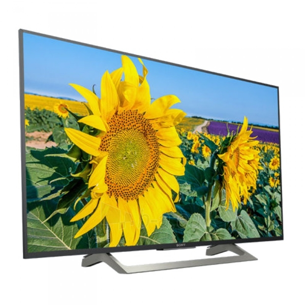 Televizorius KD-49XF8096 Paveikslėlis 2 iš 3 310820158303