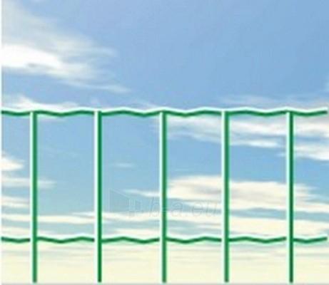 Welded mesh SUPER 250 100x50 H-2,0 m (25 m, 50 m²) Paveikslėlis 1 iš 1 239340500038