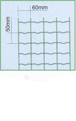 Tinklas tvoros ARGI FENCE, žalia 50mmx60mmx25mx1,0m (3,0mm) Paveikslėlis 1 iš 1 2393400000021