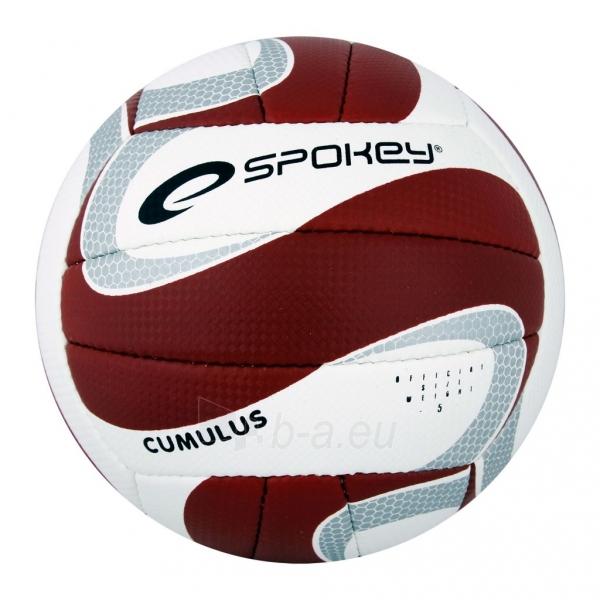 Tinklinio kamuolys Spokey CUMULUS II Brown/white Paveikslėlis 1 iš 1 310820011036