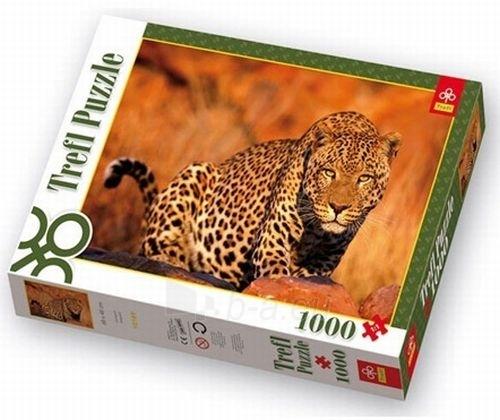 TREFL 10169 Puzzle Leopardas 1000 elementų Paveikslėlis 1 iš 1 250710100005
