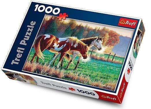 Trefl 10298 Puzzle Chilly morning on the grassland 1000 det Paveikslėlis 1 iš 1 250710100233