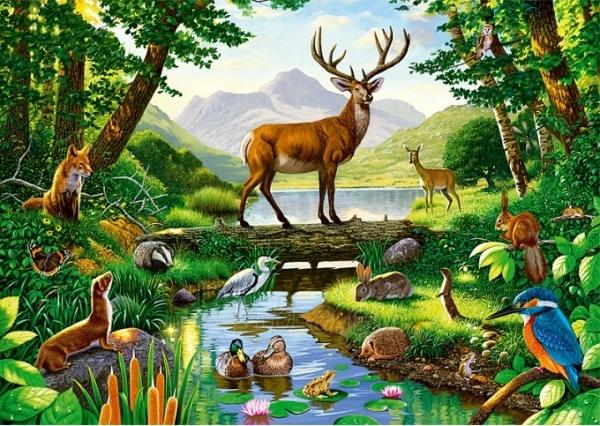 TREFL 10299 Puzzle Forest Harmony 1000 detalių Paveikslėlis 1 iš 2 250710100016