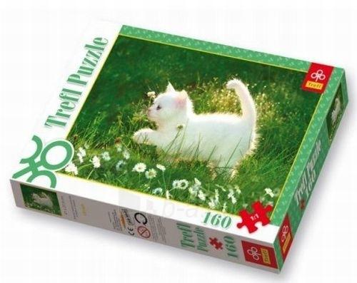 TREFL 15160 Puzzle Kačiukas160 detalės Paveikslėlis 1 iš 1 250710100025