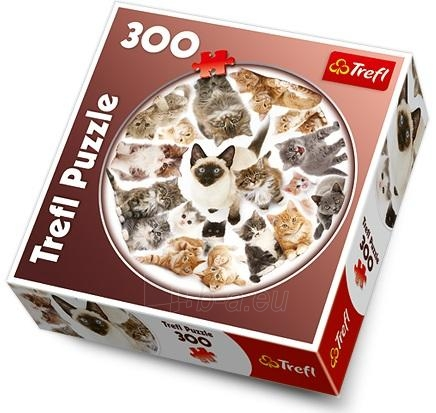Trefl 39042 Puzzle Kittens 300 det. Paveikslėlis 1 iš 1 250710100263