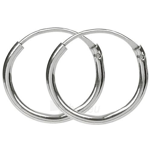 Troli sidabriniai earrings 431 154 00060 Paveikslėlis 1 iš 1 310820024411