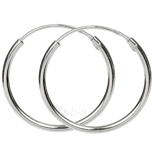 Troli sidabriniai earrings 431 154 00061 Paveikslėlis 1 iš 1 310820024412