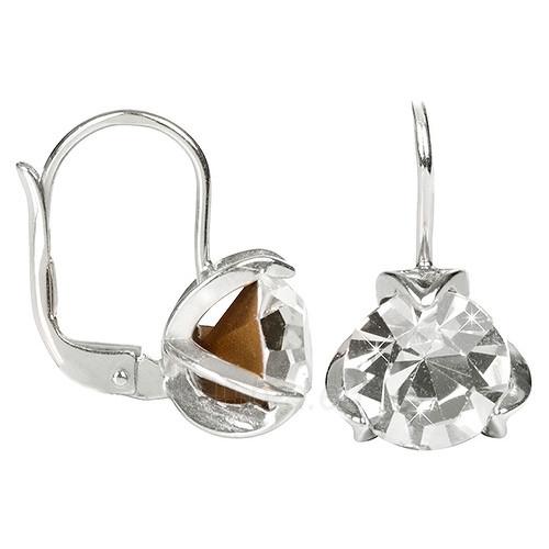 Troli Stříbrné náušnice s krystaly 438 001 01770 04 - čiré Paveikslėlis 1 iš 1 310820004852