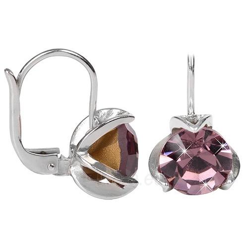 Troli Stříbrné náušnice s krystaly 438 001 01770 04 - fialové Paveikslėlis 1 iš 1 310820004854