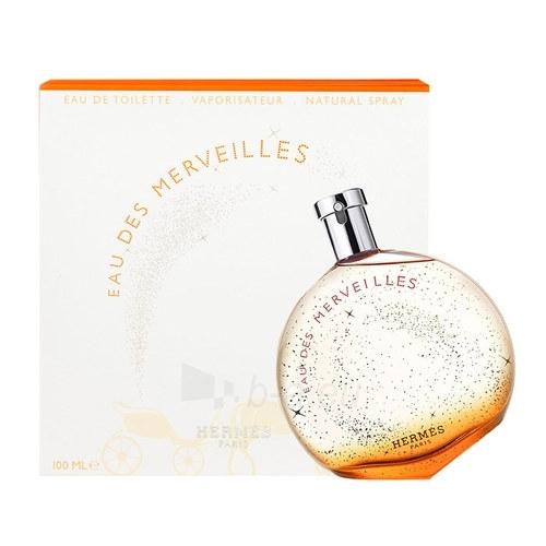 Tualetes ūdens Hermes Eau Des Merveilles EDT 100ml Limited edition Paveikslėlis 1 iš 1 250811009004