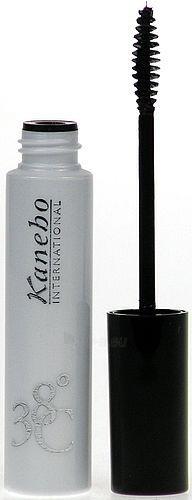 Tušas akims Kanebo Mascara 38C Silk Performance Black Cosmetic 6ml Paveikslėlis 1 iš 1 250871100204