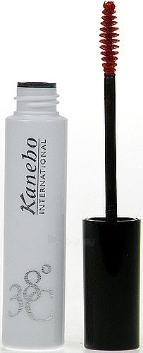 Kanebo Mascara 38C Silk Performance Brown Cosmetic 6ml Paveikslėlis 1 iš 1 250871100205