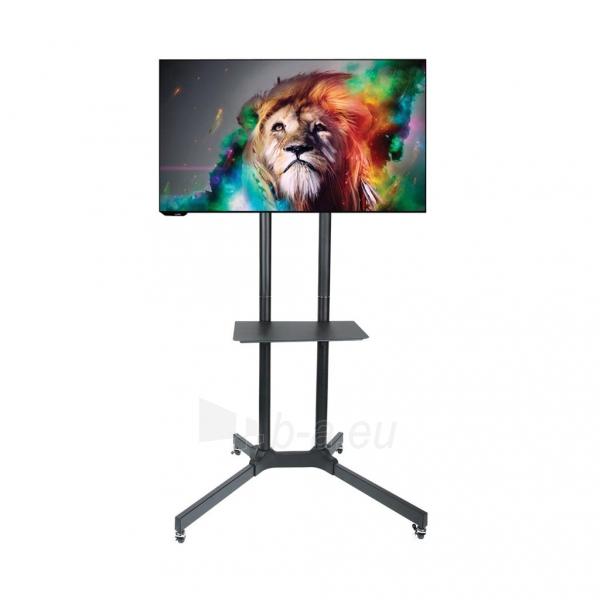 TV laikiklis ART BOARD on wheels+HOLDER TO TV LCD/LED/PLAZMA 30-65 60KG S-08A Paveikslėlis 1 iš 5 310820045027