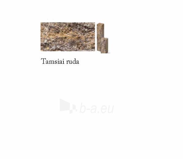 Tvoros elementas 22 cm Paveikslėlis 3 iš 14 310820022791