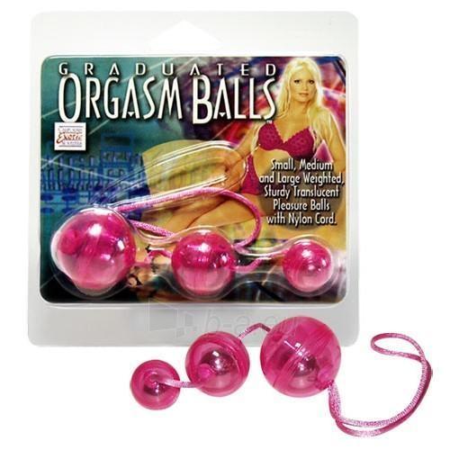 Vaginaliniai kamuoliukai Egzotiški orgazmai Paveikslėlis 2 iš 2 310820021299