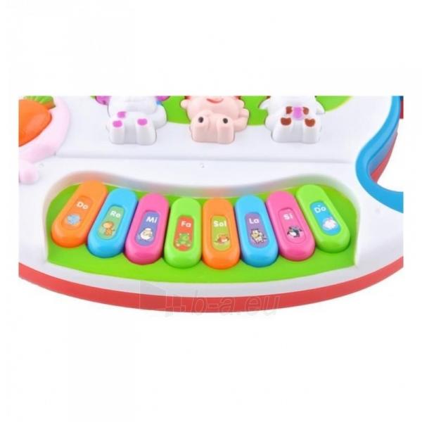 Vaikiškas pianinas Triušis B16B1 Paveikslėlis 2 iš 3 310820221245