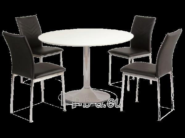 Table Flavio Paveikslėlis 1 iš 1 250422000259