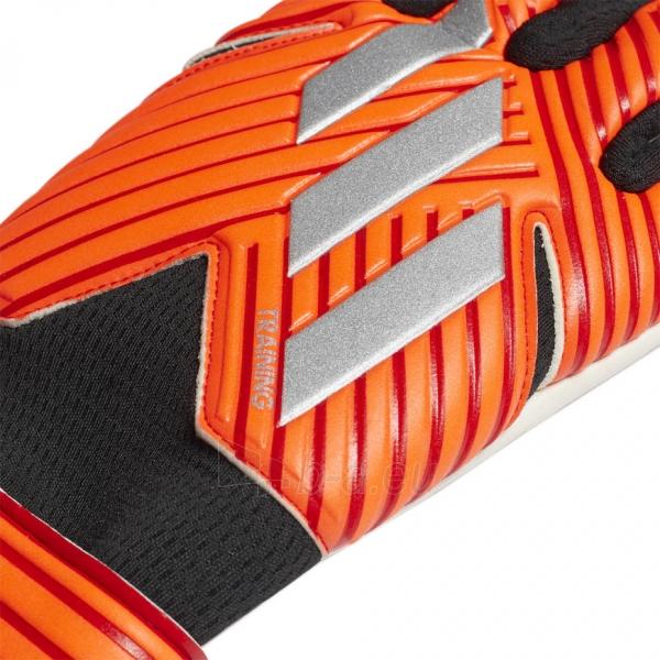 Vartininko pirštinės adidas NMZ TRN DY2588 Paveikslėlis 2 iš 4 310820180680