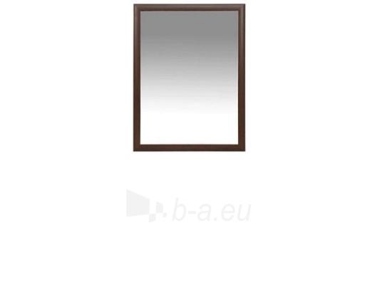 Veidrodis LUS 103 Paveikslėlis 1 iš 1 250432180007