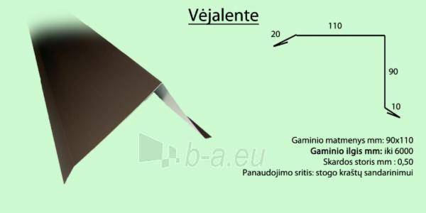 Vėjalentė 90x120 mm (SP-PA) spalvota Paveikslėlis 2 iš 2 310820038663