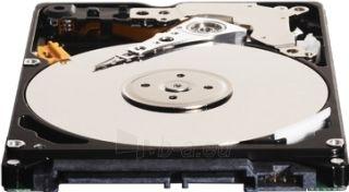 Vidinis diskas WD Black 2.5 750GB SATA3 7200RPM 16MB Paveikslėlis 2 iš 2 250255511020