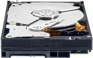 Vidinis diskas WD Black 3.5 500GB SATA3 7200RPM 64MB Paveikslėlis 2 iš 2 250255511024