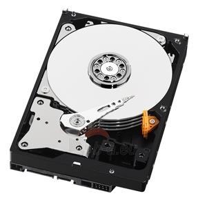 Vidinis diskas WD Purple, 3.5, 2TB, SATA/600, 64MB Paveikslėlis 1 iš 3 250255511119