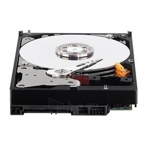 Vidinis diskas WD Purple, 3.5, 2TB, SATA/600, 64MB Paveikslėlis 3 iš 3 250255511119