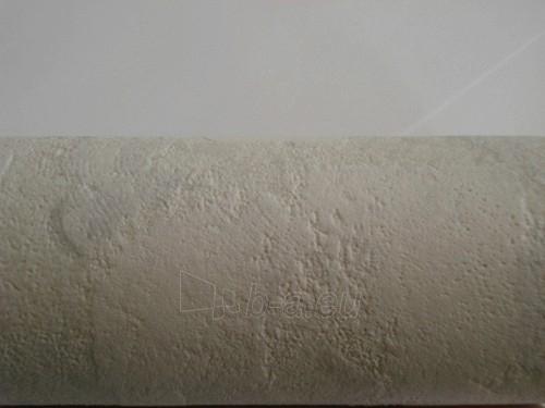 Viniliniai tapetai Coswig Wallcoverings international GmbH 3272-53 Paveikslėlis 1 iš 1 237712000057