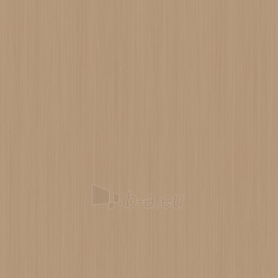 345405 BELLE EPOQUE 53 cm wallpaper, grey Paveikslėlis 1 iš 1 237712000454