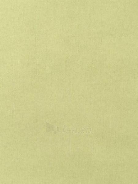 F793-04 53 cm tapetai, žalsvi vienspalviai Paveikslėlis 1 iš 1 237712000544
