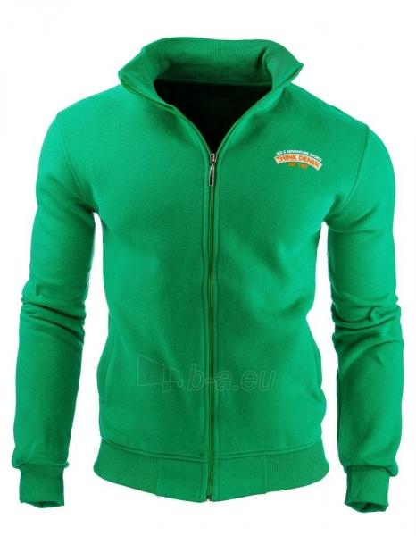 Vyriškas džemperis Altoona (Žalias) Paveikslėlis 1 iš 1 310820031852