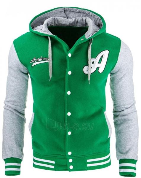 Vyriškas džemperis Cavour (Žalias) Paveikslėlis 1 iš 1 310820032044