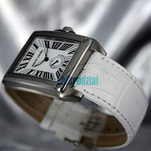 Vīriešu pulkstenis Pierre Cardin PC67561.103032 Paveikslėlis 2 iš 9 30069608680