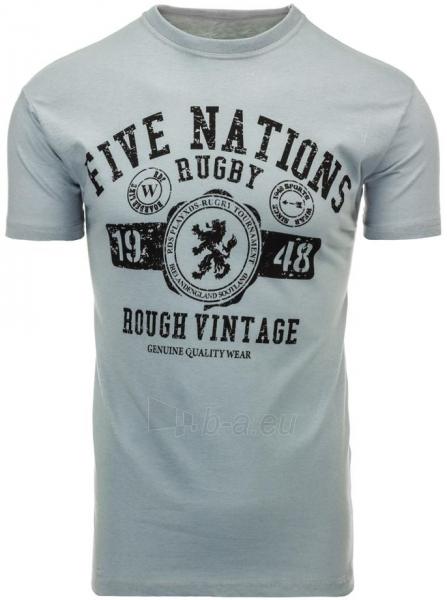 Vyriški marškinėliai DeWitt (Pilki) Paveikslėlis 1 iš 5 310820032004