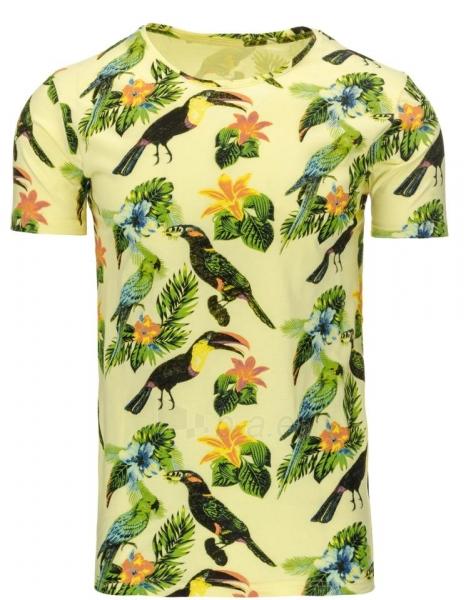 Vyriški marškinėliai Fae (Geltoni) Paveikslėlis 1 iš 5 310820031216