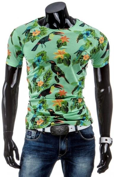 Vyriški marškinėliai Fae (Žali) Paveikslėlis 1 iš 4 310820034854
