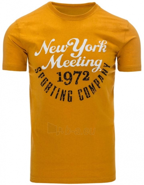 Vyriški marškinėliai Robin Paveikslėlis 1 iš 5 310820033535