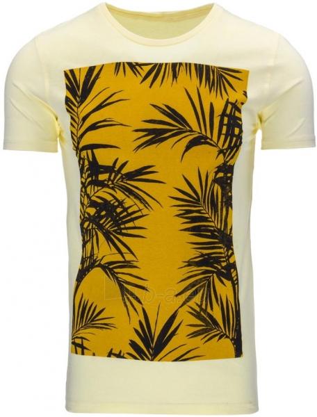 Vyriški marškinėliai Roswell (Geltoni) Paveikslėlis 1 iš 5 310820033569