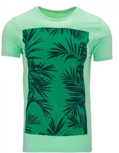Vyriški marškinėliai Roswell (Žali) Paveikslėlis 1 iš 5 310820033568