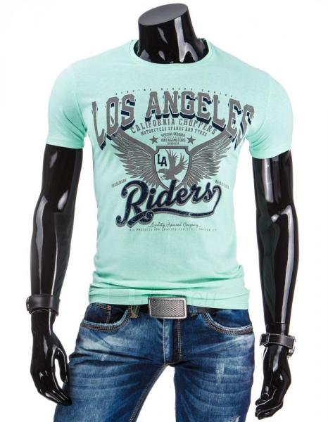 Vyriški marškinėliai Shad (Mėtiniai) Paveikslėlis 1 iš 4 310820034862