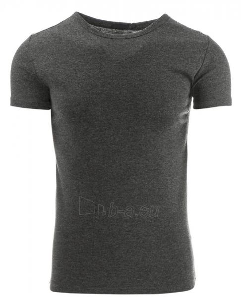 Vyriški marškinėliai Springdale (Antracitas) Paveikslėlis 1 iš 1 310820033670