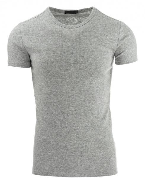 Vyriški marškinėliai Springdale (Pilki) Paveikslėlis 1 iš 1 310820033671