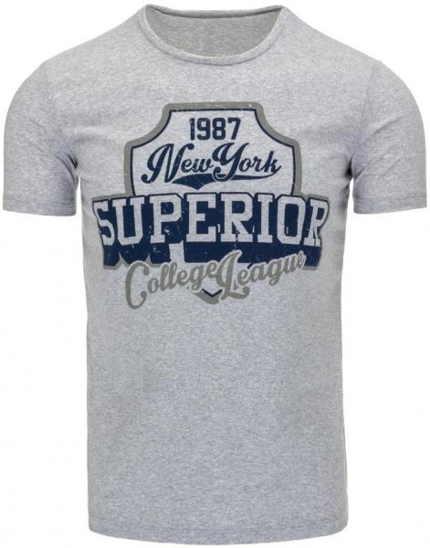 Vyriški marškinėliai Superior (Pilki) Paveikslėlis 1 iš 5 310820033527