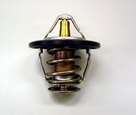 WAHLER termostatas, aušinimo skystis 410181.82D Paveikslėlis 1 iš 1 30119601747