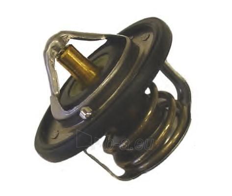 WAHLER termostatas, aušinimo skystis 410229.82D Paveikslėlis 1 iš 1 30119601755