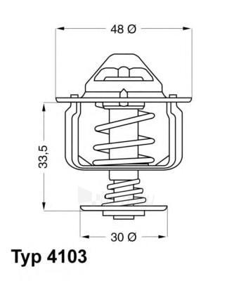 WAHLER termostatas, aušinimo skystis 4103.82D Paveikslėlis 1 iš 1 30119601759